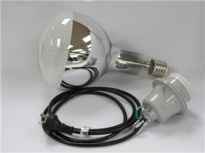 MV Exposure Lamp 500W Lamp & Assembly