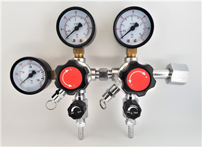 Dual Co2 Regulator